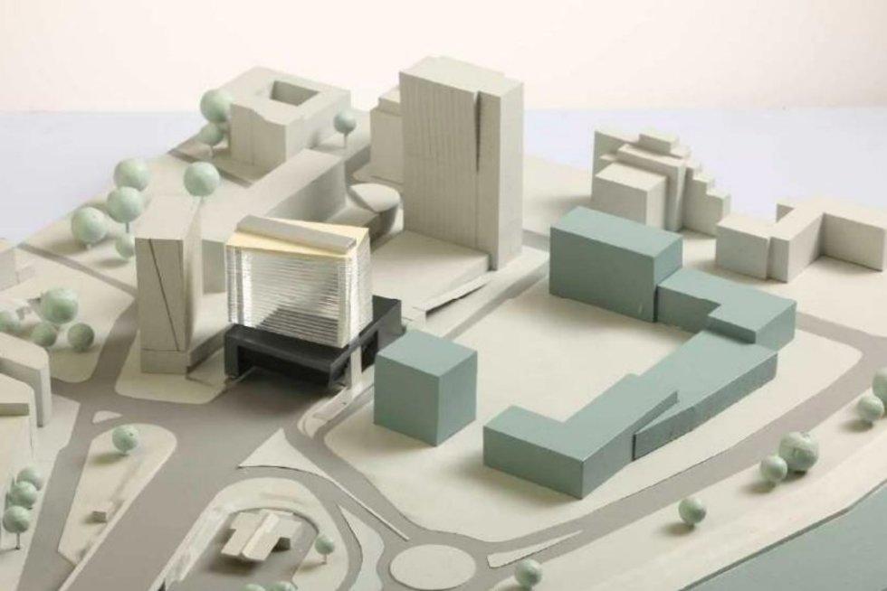 Dangoraižio projektas (Architektų sąjungos nuotr.)