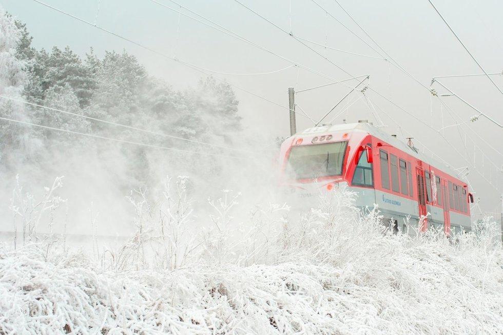 Mindaugas Krilavičius, Vilnius