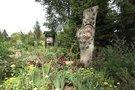 Botanikos sodas (nuotr. stop kadras)