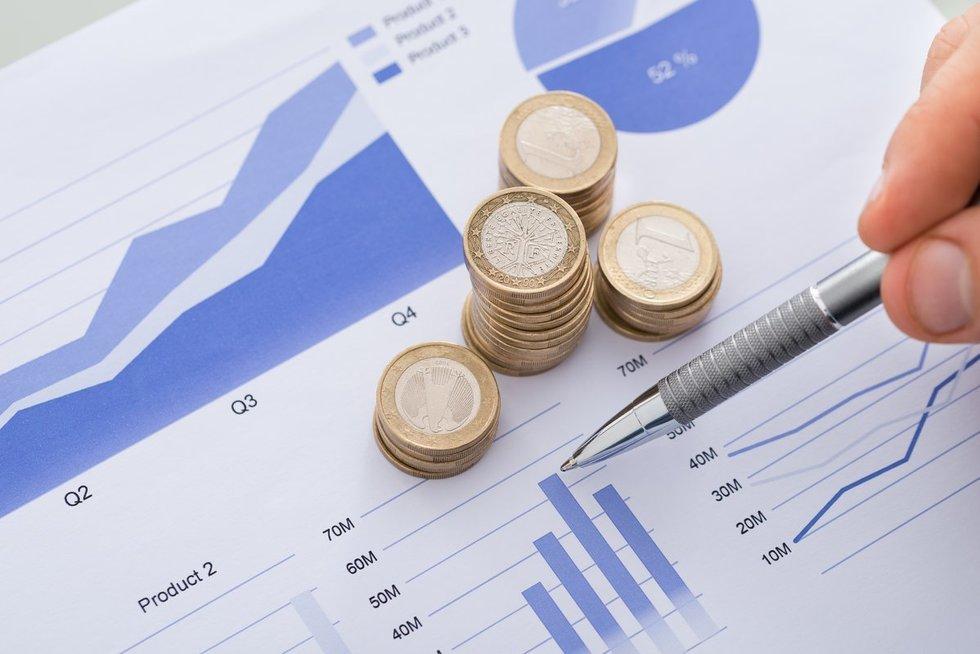 Finansinė ataskaita (nuotr. 123rf.com)