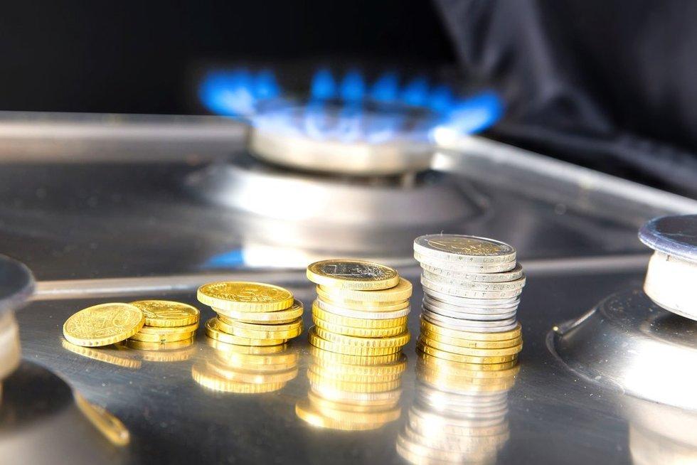 Mokesčiai už dujas (nuotr. 123rf.com)