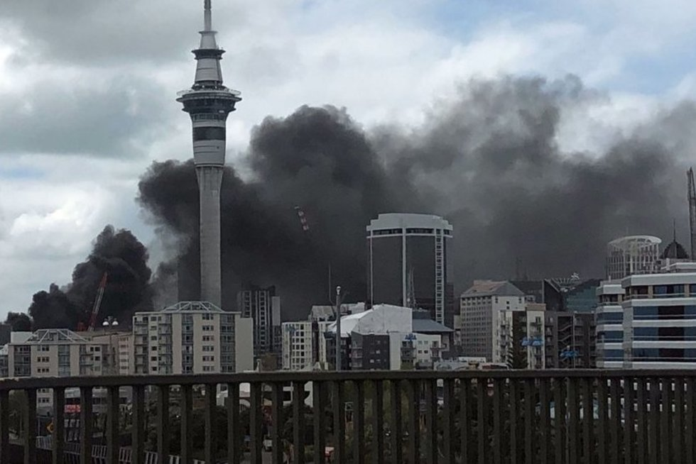Gaisras Naujojoje Zelandijoje (nuotr. SCANPIX)