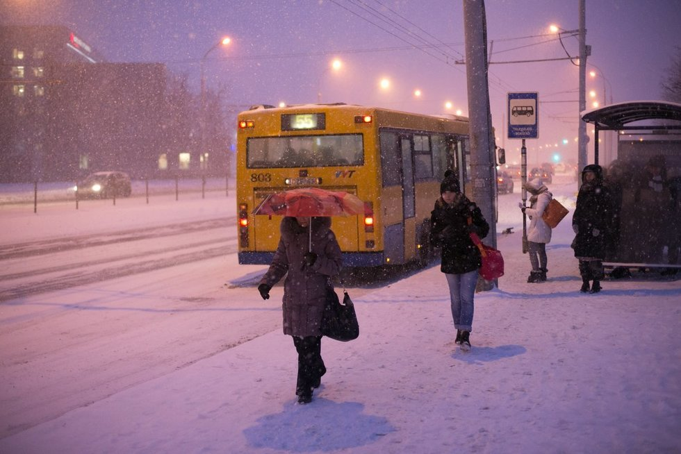 Viešasis transportas (nuotr. BFL / A. Ufartas)
