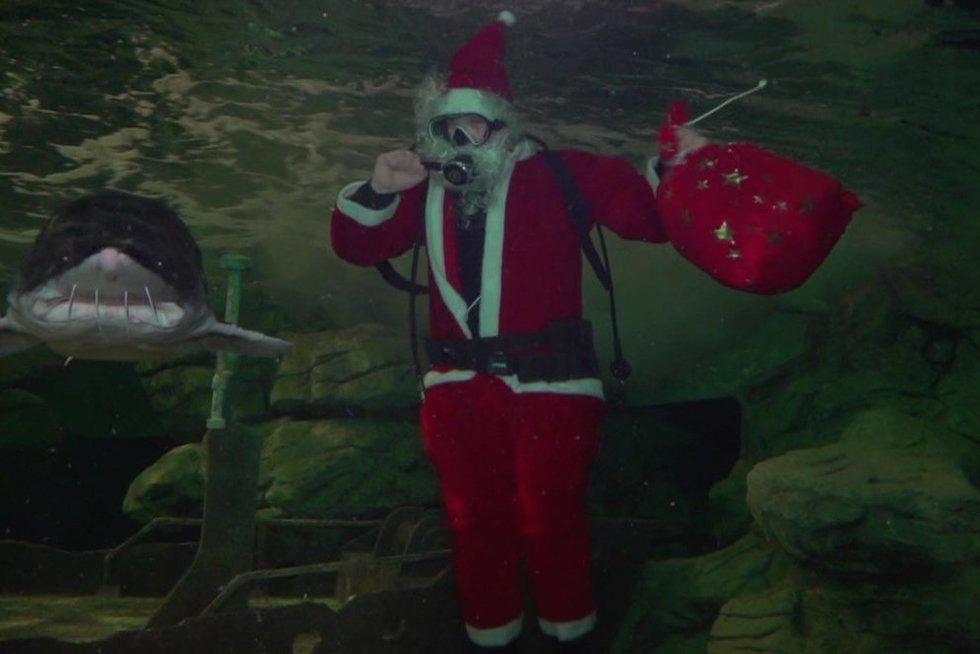 Kalėdų Senis vandenyje (nuotr. stop kadras)