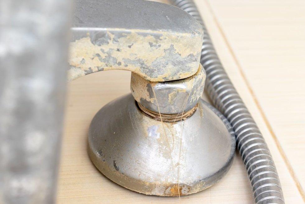 Rūdys vonioje (nuotr. 123rf.com)