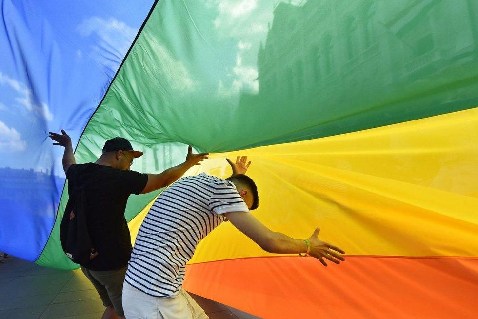 Esminis sprendimas Lietuvai: diskriminavo gėjų porą (nuotr. SCANPIX)
