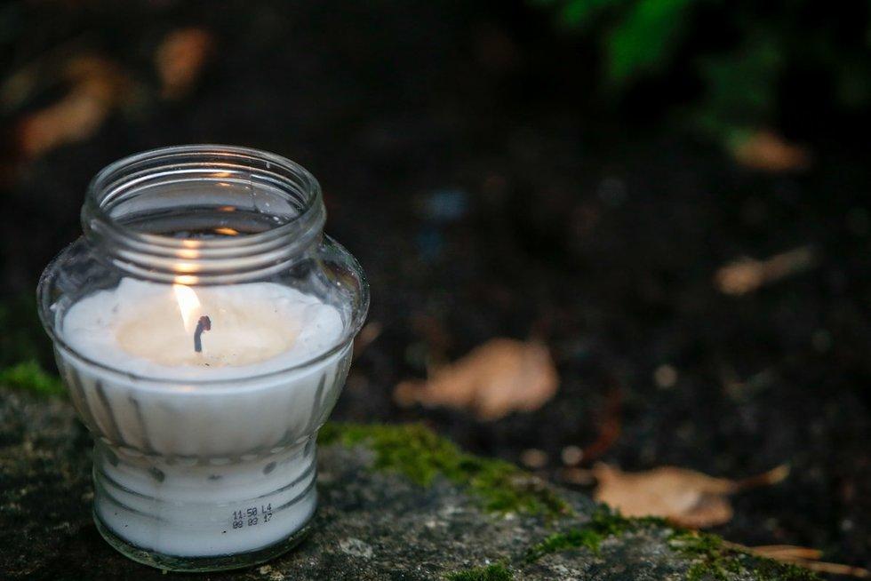 Žvakutės (nuotr. Fotodiena.lt)