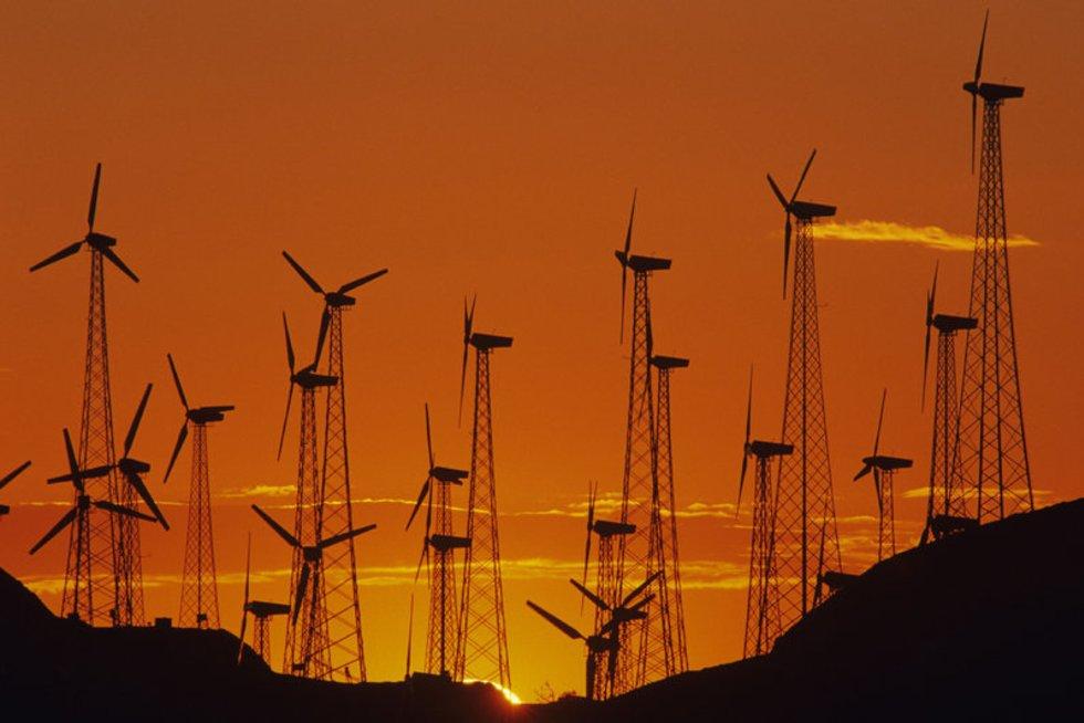 Vėjo jėgainės (nuotr. Alloverpress.ee)