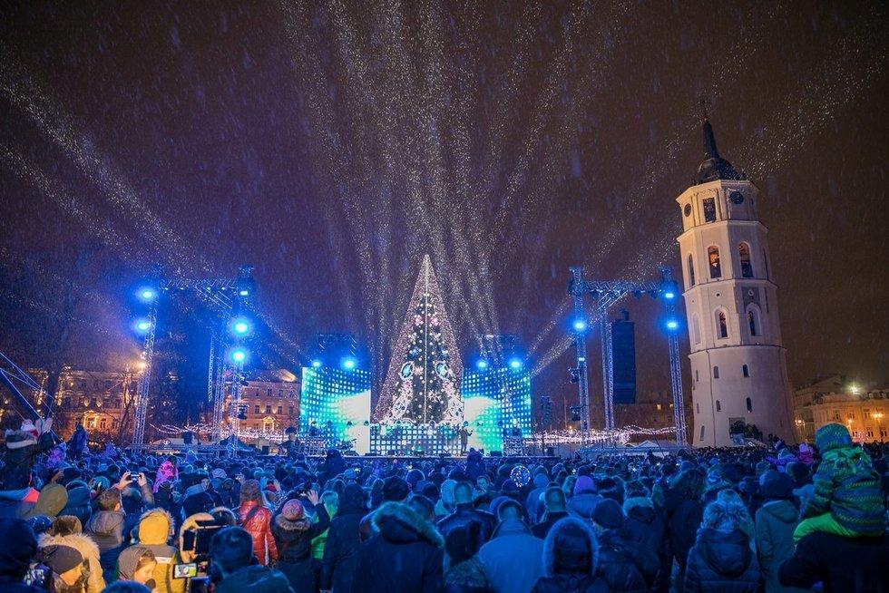 Vilniaus eglė 2018 (nuotr. Organizatorių)
