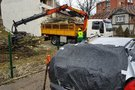 Filaretų gatvėje Vilniuje medis užvirto ant opelio (nuotr. TV3)