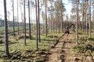 Oficialu: Labanoro girioje stabdomi miško kirtimai (nuotr. TV3)