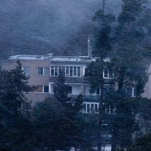 Lietuvą talžo stiprus vėjas ir pūga: pasipylė avarijos, tūkstančiai liko be elektros