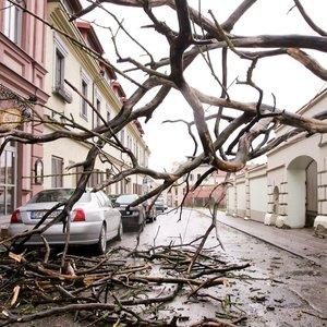 Audra pasieks ir Lietuvą: ateina ne tik stiprus vėjas