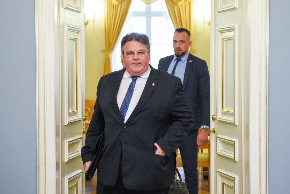 Linas Linkevičius (nuotr. Fotodiena/Justino Auškelio)
