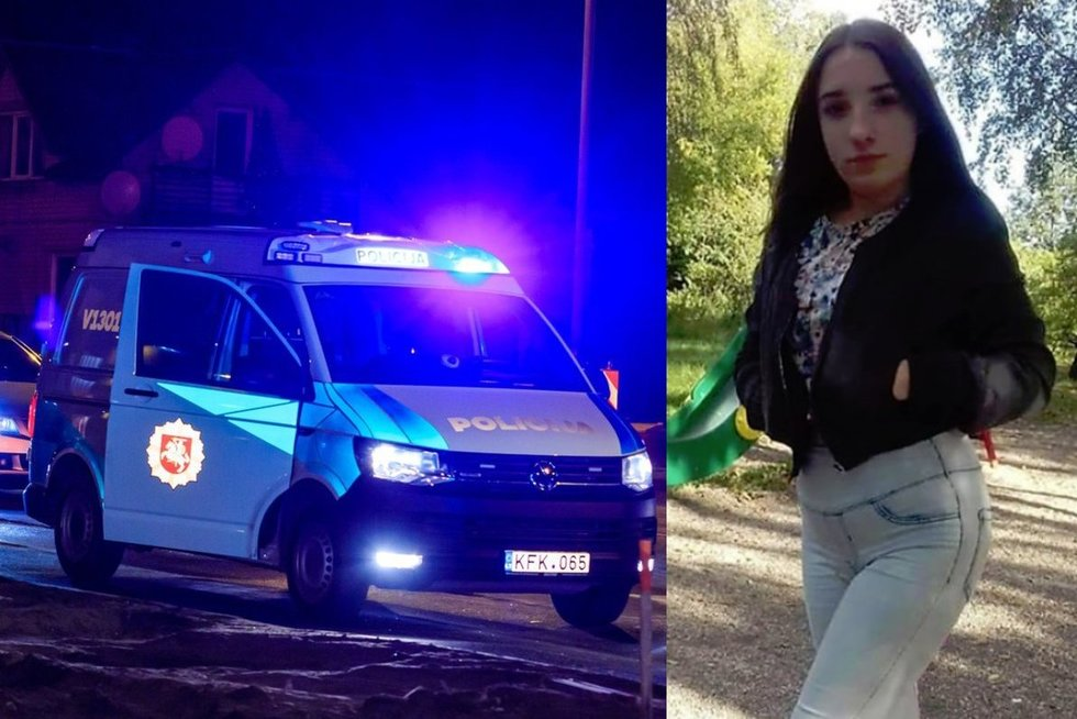Vilniuje dingo 15-metė (tv3.lt koliažas)