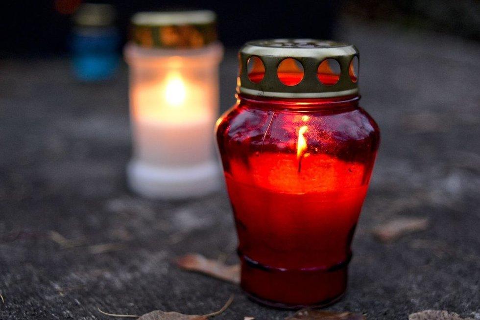Žvakė (nuotr. Fotodiena.lt)