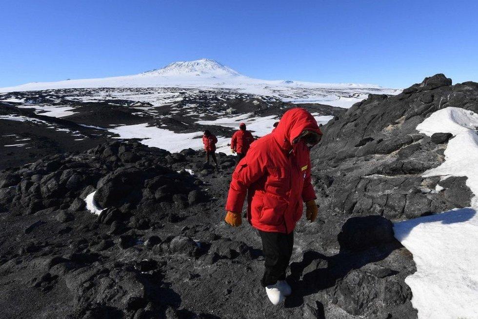 Antarktida (nuotr. SCANPIX)
