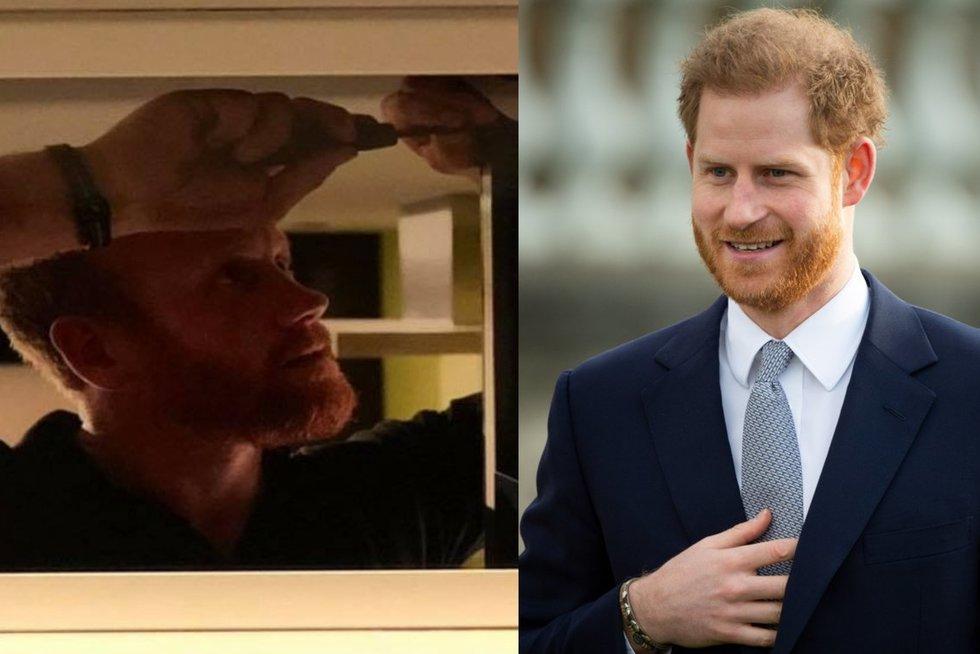 Princas Harry ieško darbo? (tv3.lt fotomontažas)
