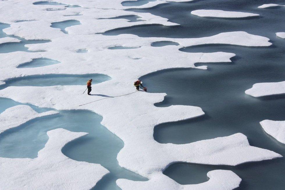 Rekordiškai šilti orai Arktyje lėmė masinį ledo tirpimą (nuotr. SCANPIX)
