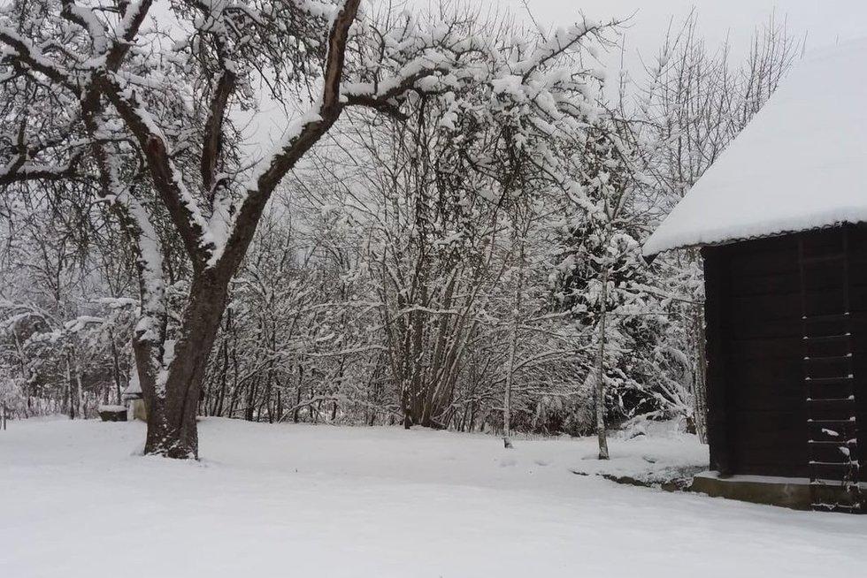 sniegas (nuotr. asm. archyvo)