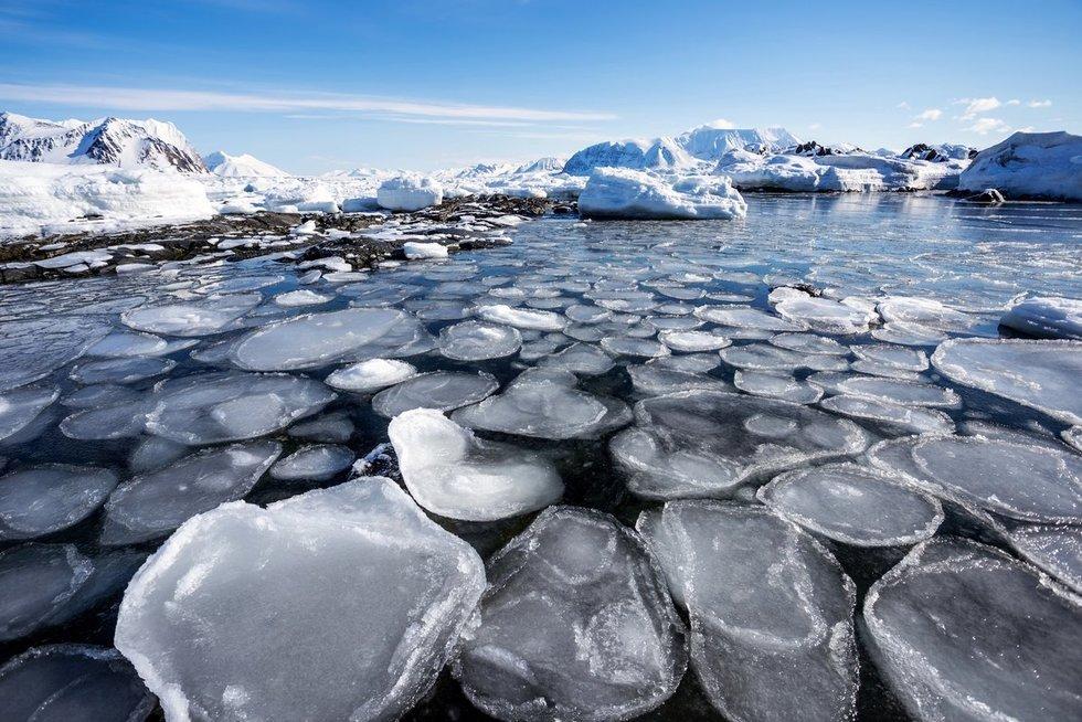 Arktis (nuotr. Fotolia.com)