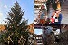Rygos kalėdinė mugė ir kainos (nuotr. tv3.lt)