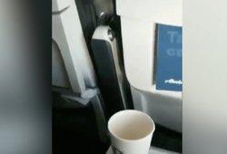 Įrašas iš lėktuvo tapo sensacija: neįmanoma nesijuokti iš kuriozo