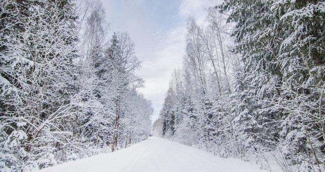 Besibaigiančios žiemos nuotraukos