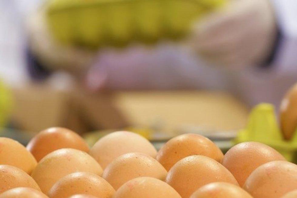 Kiaušiniai (Projekto partnerio nuotr.)