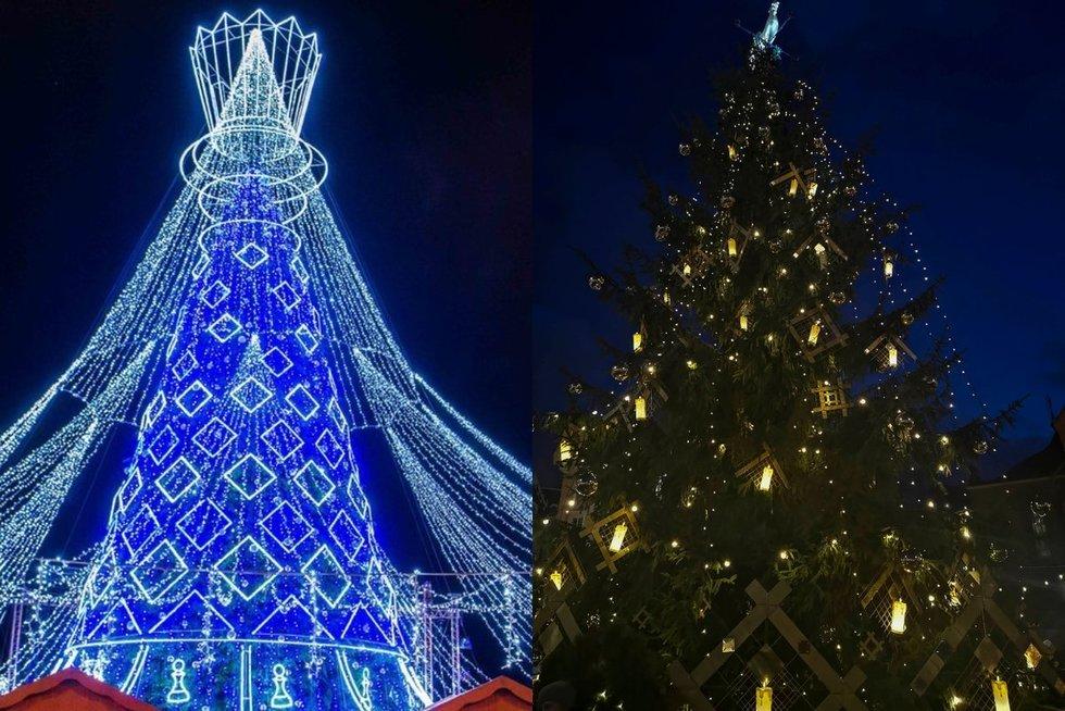 Vilniaus ir Rygos kalėdinės eglutės (nuotr. tv3.lt)