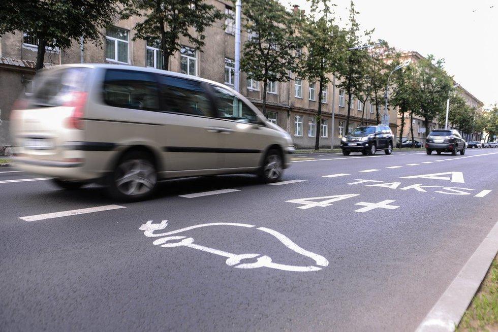 Naujos taisyklės elektriniams automobiliams (nuotr. Fotodiena.lt)