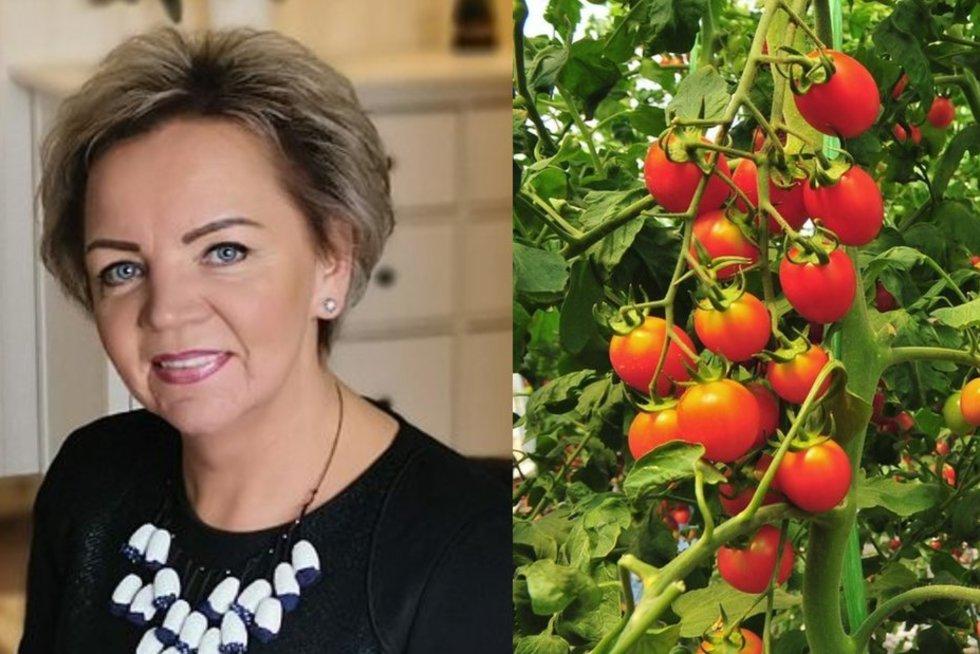 Per šventes feisbuke pasidalijusi nuotraukomis su savo užaugintais, bet svarbiausia žiemą sunokusiais pomidorais, Vilma sulaukė nemažai internautų klausimų (tv3.lt fotomontažas)