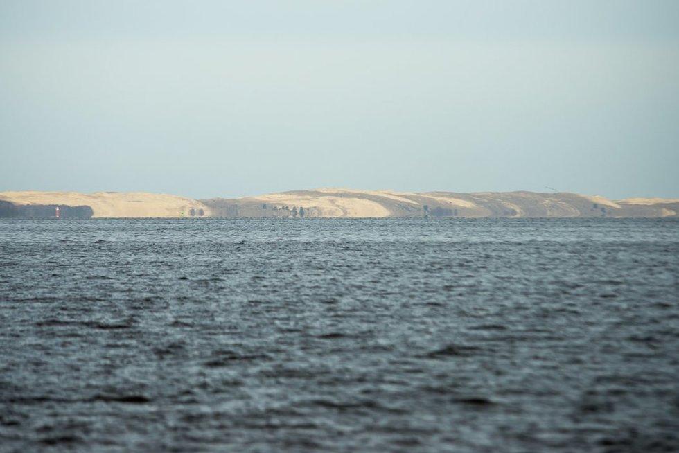 Pavasaris Nemuno deltoje. Kuršių marios (nuotr. Eimanto Genio)