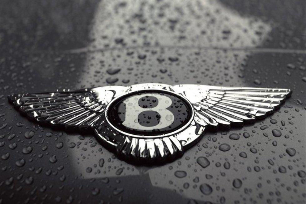 """""""Bentley"""". (nuotr. Gamintojo)"""
