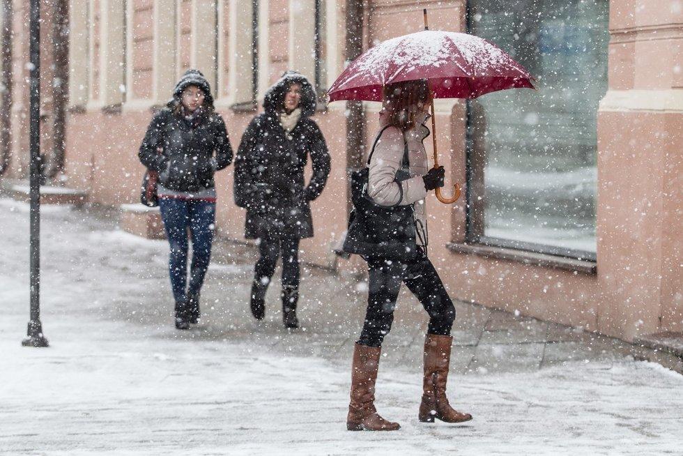 Žiema (Greta Skaraitienė/Fotobankas)