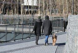 Orai: pavasarišką šilumą pakeis žiemiškos pūgos