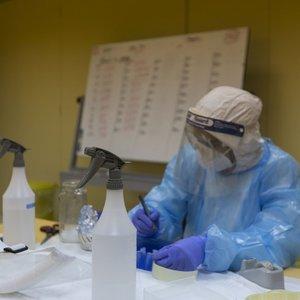 Koronavirusas pasiekė Vilkaviškį: nustatytas vienas atvejis, kitas asmuo – saviizoliacijoje