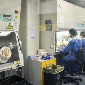 Koronavirusu užsikrėtė Kauno klinikų rezidentas