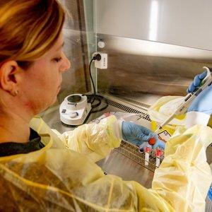 Koronaviruso atvejų skaičius Lietuvoje pašoko iki 187