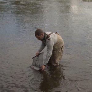 Žvejai į Šešupę suleido 2000 upėtakių: žvejoti gali visi, bet su viena sąlyga
