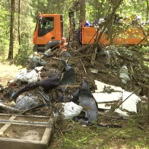 Siūlo šiukšlintojus miške prilyginti brakonieriams: vos už maišą – atimtas automobilis?