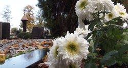 Nykstančios Lietuvos realybė: vienišių kapų daugėja, o jais pasirūpinančių – vis mažiau