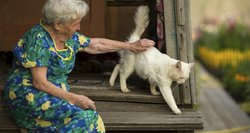 Pensinio amžiaus ilginimas – būtinybė, bet ragina dėmesį atkreipti į tris veiksnius