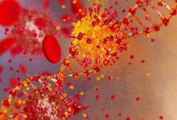 Covid-19 elgesiu panašesnis į vėžį nei į virusą – mokslininkai