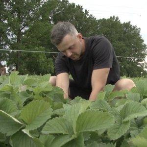 Ūkininkas pripažįsta: nors ir nenukentėjo, paramos neatsisakys