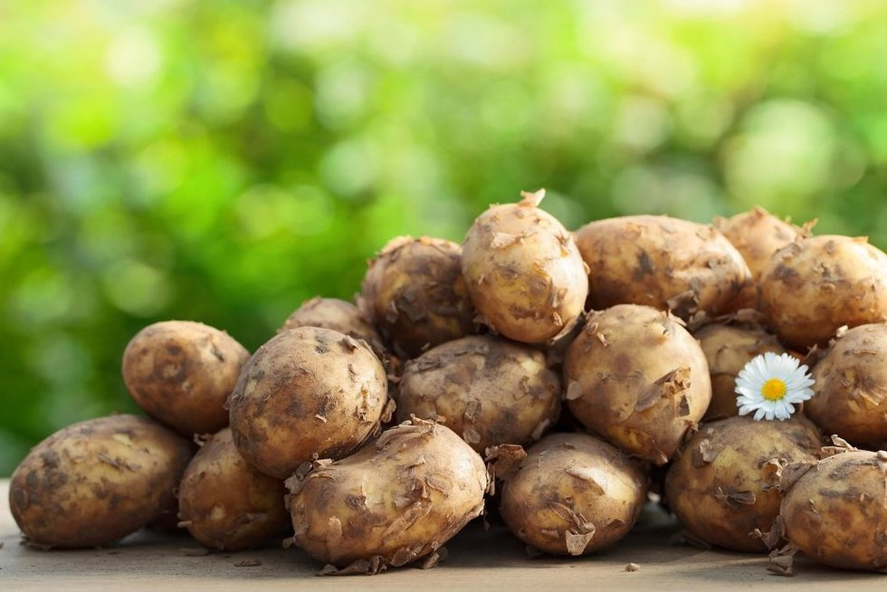 Bulvės (nuotr. 123rf.com)