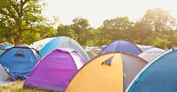 Festivaliuose linksminasi ir kenkėjai (nuotr. Organizatorių)