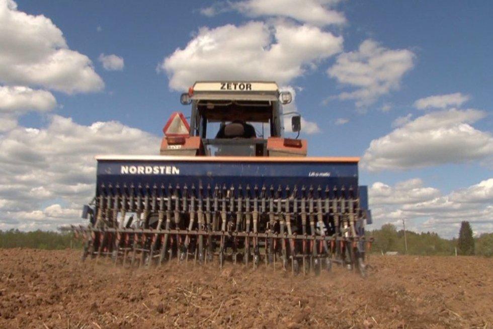 Tik dėl karantino išaiškėjo, kiek ištikrųjų Lietuvos žemės dirba Lenkijos ūkininkai (nuotr. stop kadras)