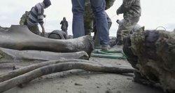 Sibire iš ežero molio mokslininkai ištraukė neįtikėtiną radinį: aptiko žvejai