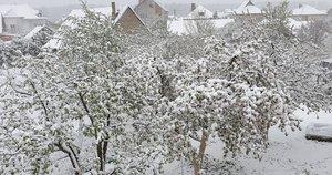 """Lietuvą padengė sniego sluoksnis (nuotr. Orai ir klimatas Lietuvoje/""""Facebook"""")"""